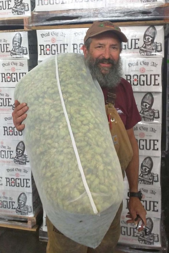 John Brewing Fresh Hop Sept 2015 2