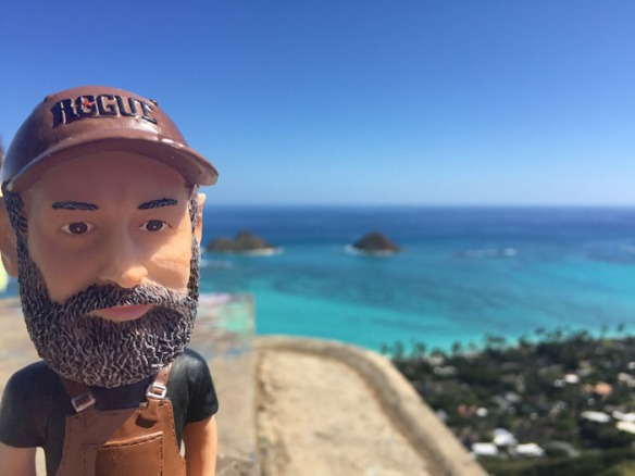 Bobblehead Hawaii Feb 2016